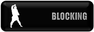 KIHON BASIC BLOCK.png
