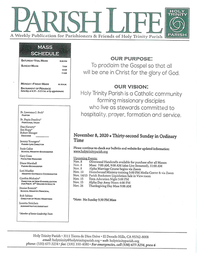 Pages from Bulletin 8 November.png