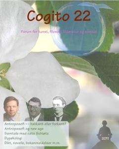 cogito22.png
