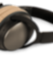 Black and Brown Headphones
