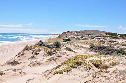 beachport conservation park