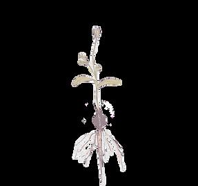 Watercolor-Paper-Template_edited_edited_