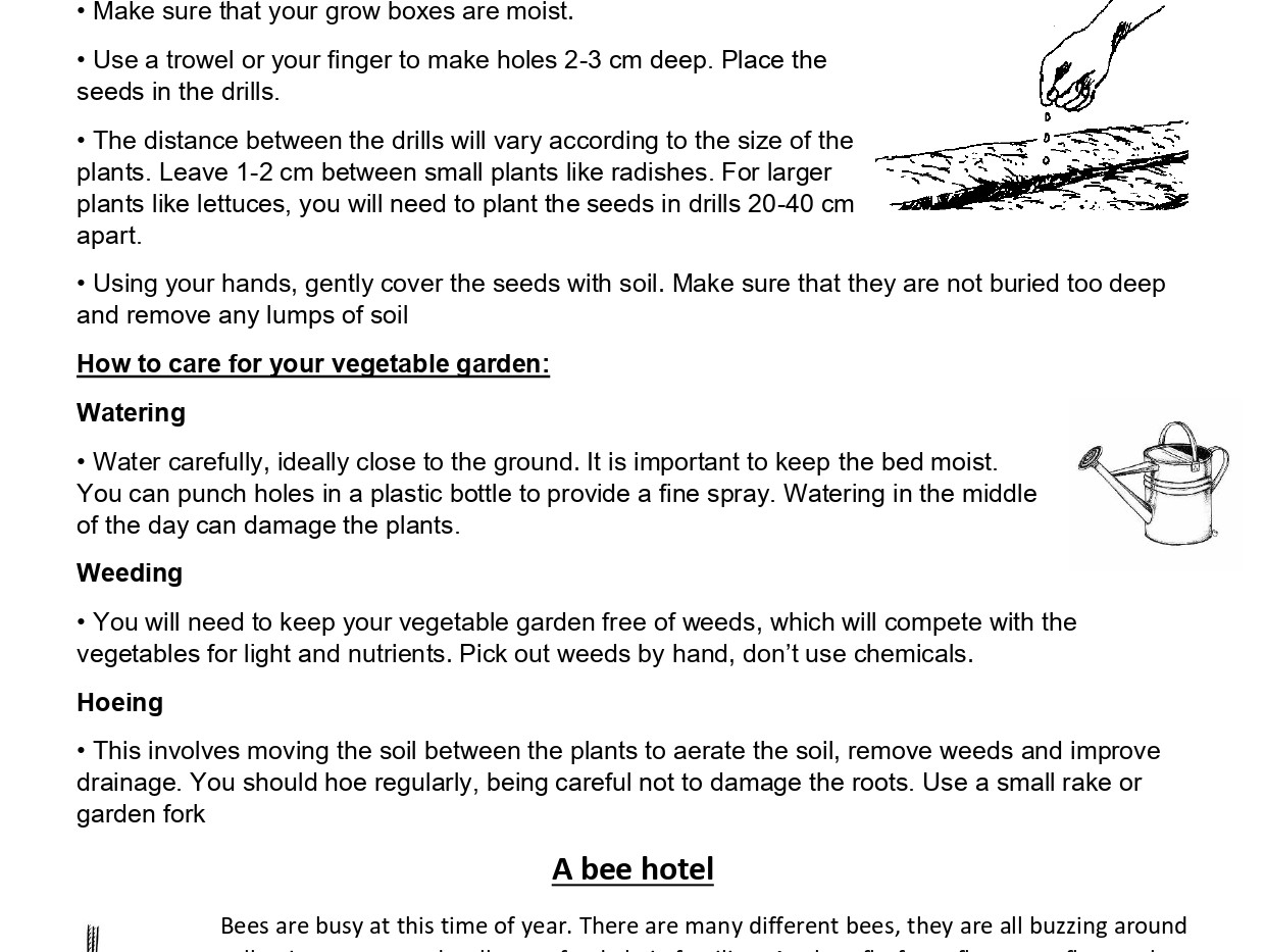 Garden activity booklet PHILL_page-0002.