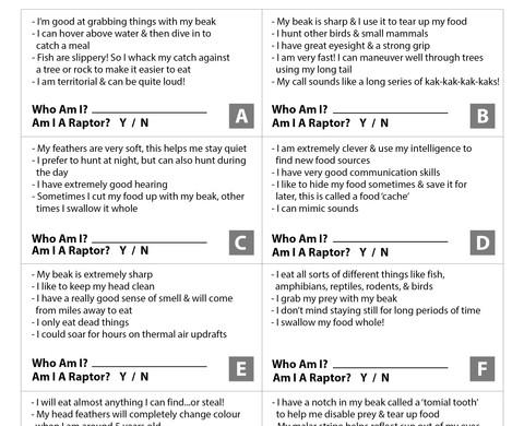 activity book_page-0008.jpg