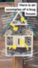buh house.jpg