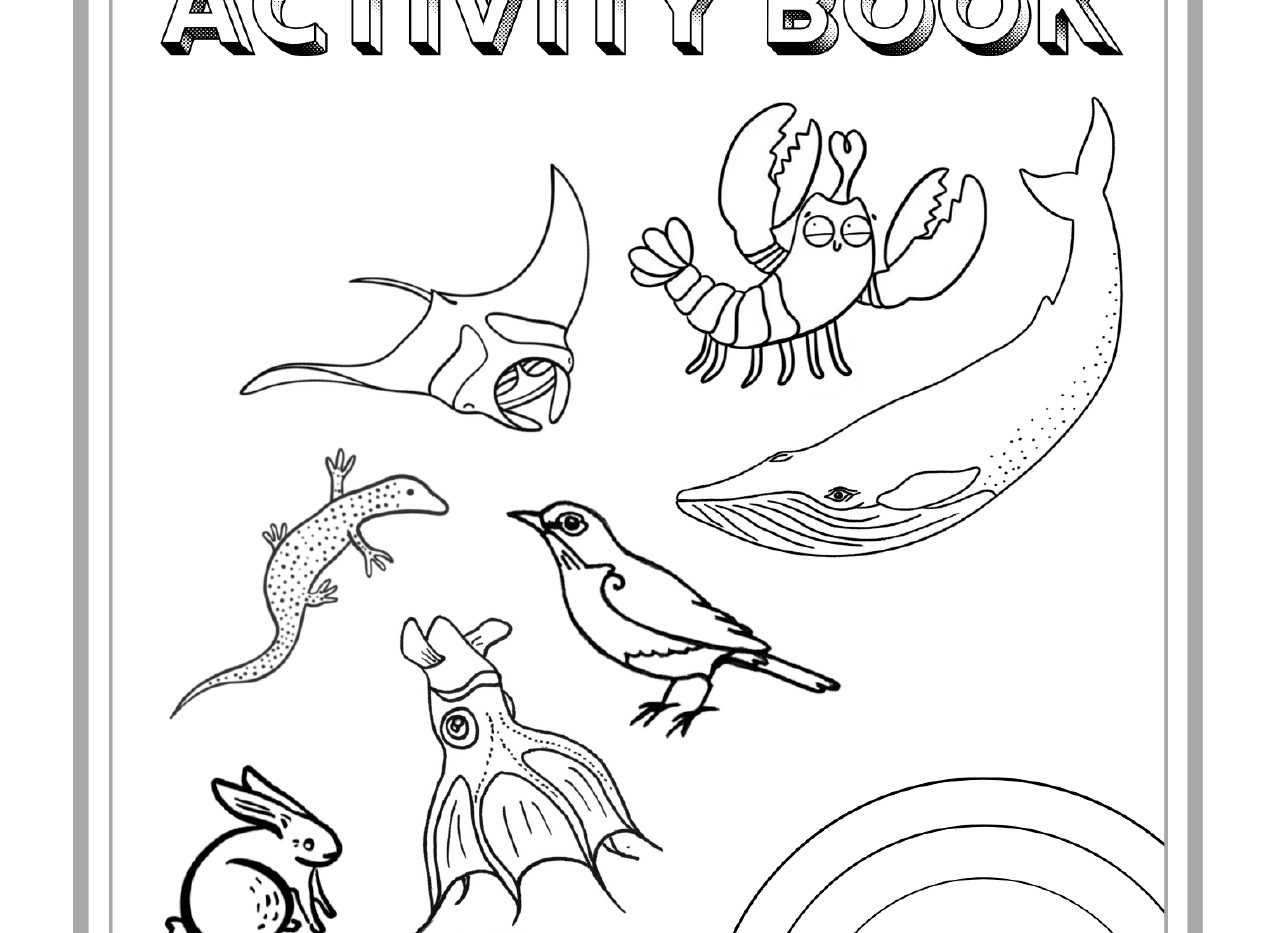 activity book_page-0001.jpg