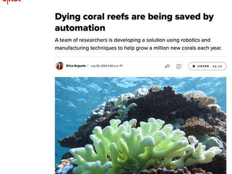 Coral Maker covered by CNET