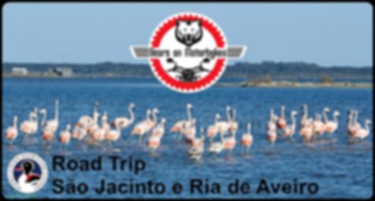Road_trip_São_Jacinto_e_Ria_de_Aveiro.pn