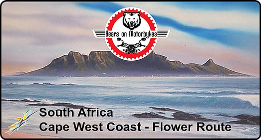 South Africa - Cape West Coast - Flower