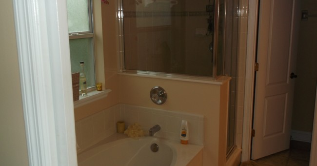 master-tub-shower-650x340