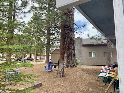 19-backyard-3jpeg