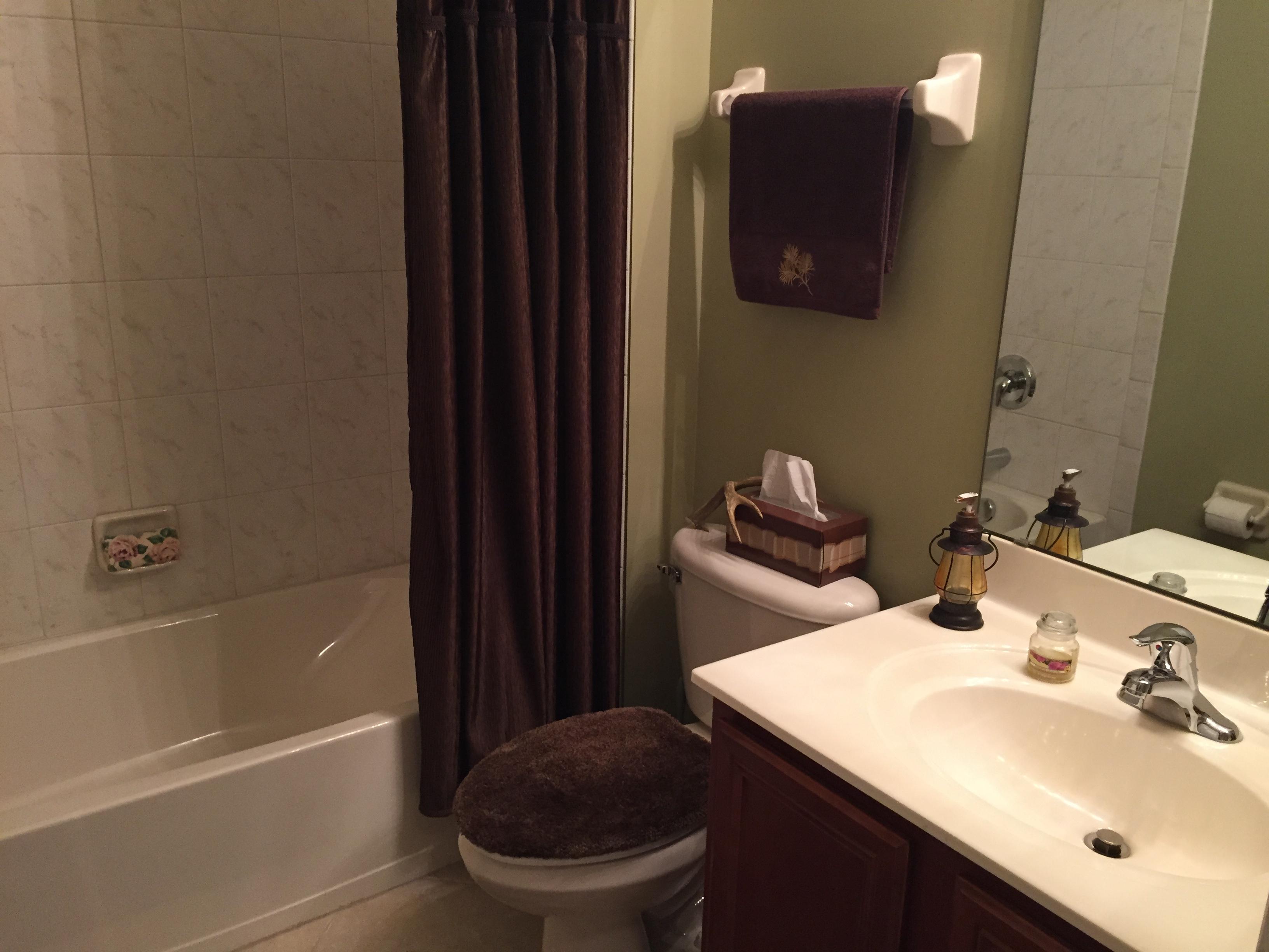 Guest bath 1 - 2