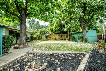20-backyard2jpg