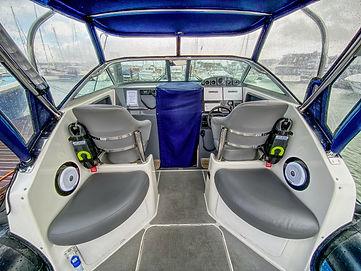 Protector Cockpit.jpg