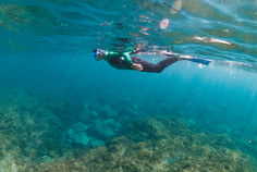 Snorkel experiences are for the entire family