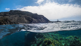 Snorkel Experience in the South
