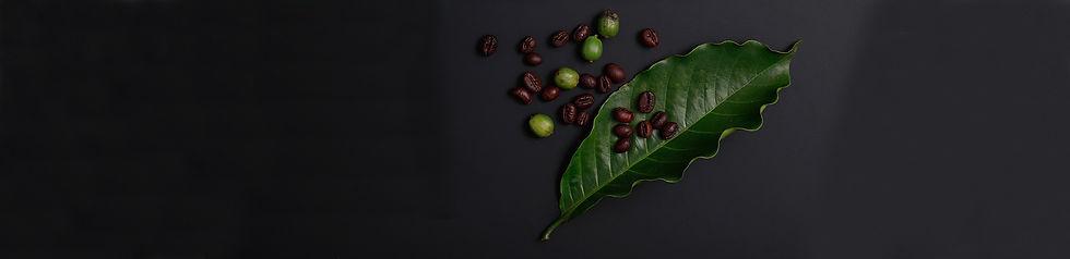 coffee-leave.jpg