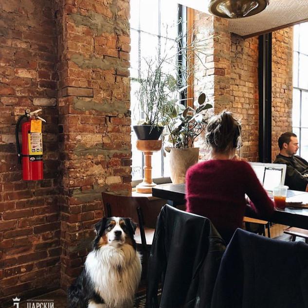 Старинный кирпич в интерьере кафе и ресторана