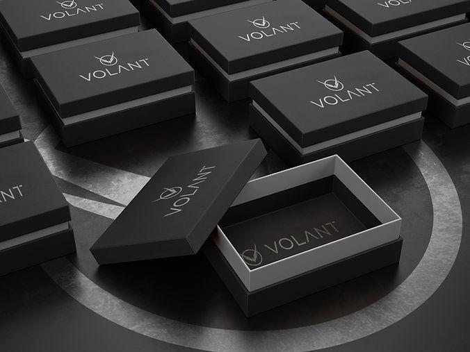 VolantBoxMock2.jpg