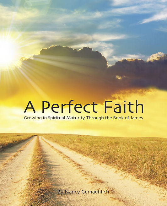 A Perfect Faith Cover Front Only.jpg
