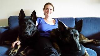 Psychologie in de hondensport: ik ben toch niet gek? - Deel 2 Vooroordelen