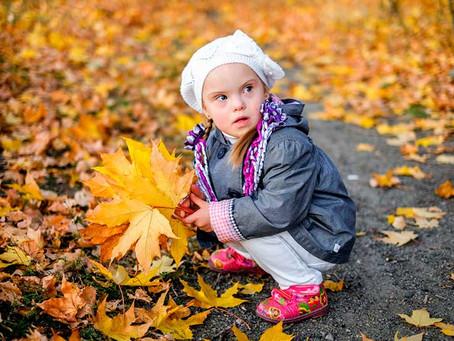 Chegamos no Outono