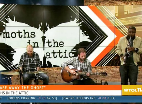 Moths in the Attic on WTOL 11 Toledo Your Day - 11.8.19