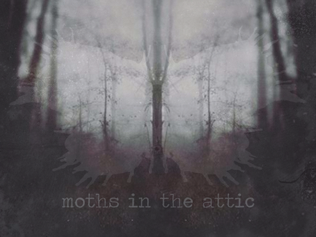 Review: Garrett Tanner - Moths in the Attic LP