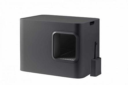 hoopo-noir1-900x600.jpg