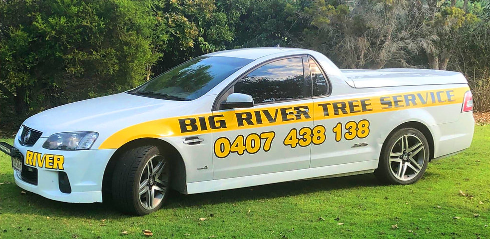 BIg river tree services ute.jpg