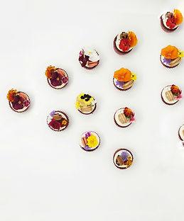 Floral Cupcakes II.jpg