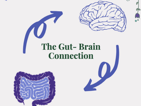 The Gut-Brain Connection: Can Nutrition Really Impact Mental Health?