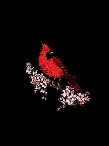 The_Redbird_Listening_Room_Logo.png