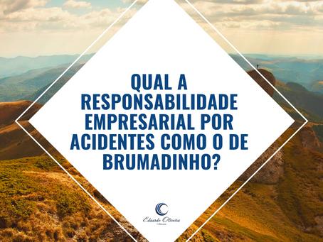 Qual a responsabilidade empresarial por acidentes como o de Brumadinho/MG?