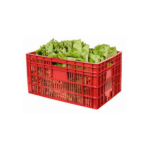 Caixa Plástica Agrícola Vazada 31 TA