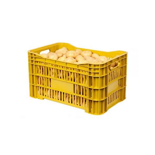 Caixa Plástica Agrícola Vazada 31 TAS