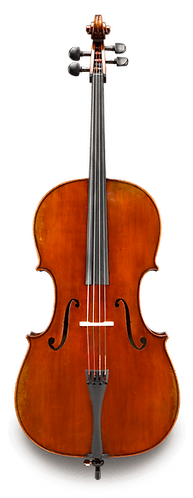 Albert Nebel 601SBC Advanced Cello Outfit