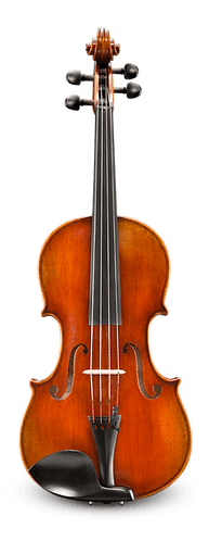 Rudoulf Doetsch VA701SBC Professional Viola Outfit