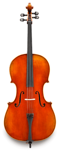 Frederich Wyss VC703SBC Professional Cello Outfit