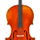 Thumbnail: Frederich Wyss VC703SBC Professional Cello Outfit