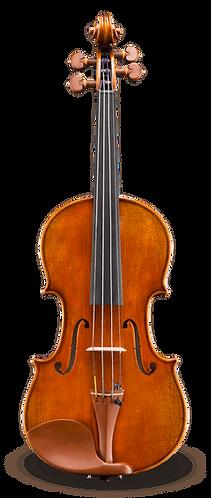 Raul Emiliani VL928SBC Professional Violin Outfit - 4/4