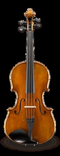 Albert Nebel VA601SBC Advanced Viola Outfit
