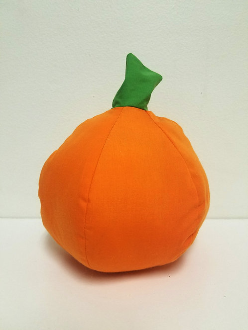 Pumpkin Project & Instructions