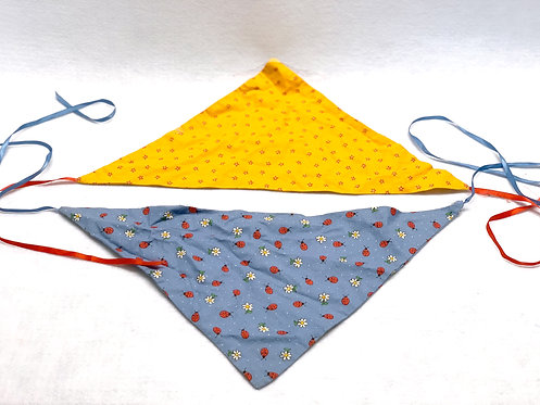 Bandanna Project & Instructions