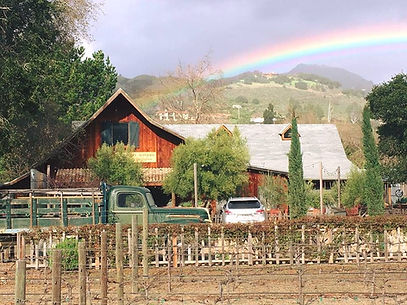 cowgirl 5.jpg
