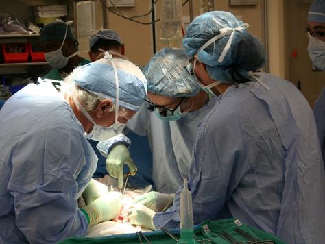 Doação de órgãos: Brasil é referência, mas ainda há problemas