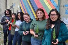 Pibid: programa educacional valoriza a formação de docentes
