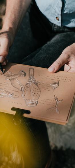 Tumbleweed & Fireflies - Illustrator of