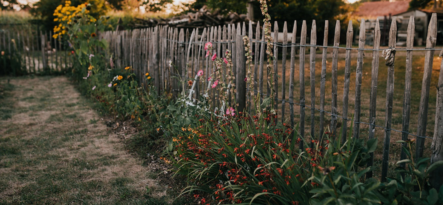 Tumbleweed & Fireflies - Moestuin Zsazsa