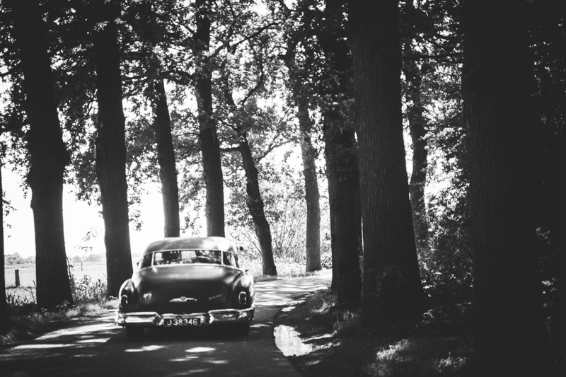 Bruiloft Dille en Arno-143.jpg